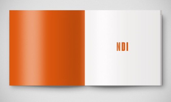 NDI_03