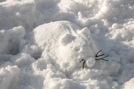 redesign-snowrat-03