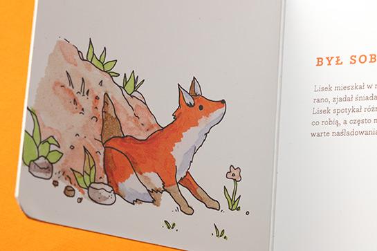 redesign-fox-04